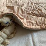 пудровое одеяло